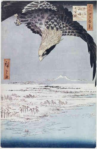 «Dans cette estampe à la composition audacieuse, Hiroshige mêle deux thématiques : lareprésentation des animaux et celle du paysage. La vue cavalière – plus empreinte d'influence occidentale que de tradition extrême-orientale – sur les champs couverts de neige est brusquement coupée par le plongeon d'un oiseau de proie qu'on ne voit qu'à mi-corps.»