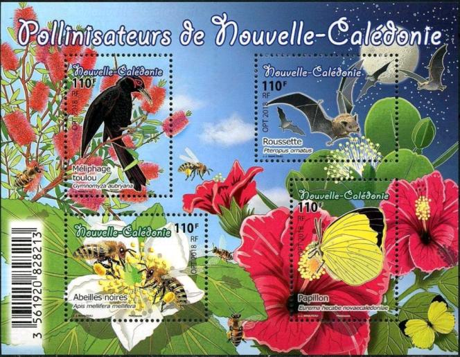 Pollinisateurs de Nouvelle-Calédonie, par Jean-Jacques Mahuteau (2018).