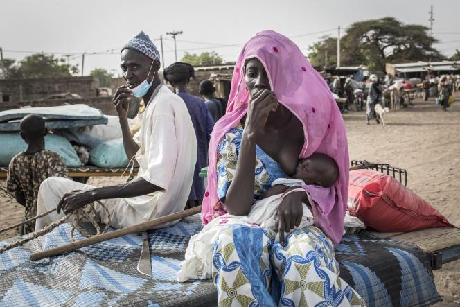 Des bergers peuls rentrent du marché informel deBarkédji, au Sénégal. La fermeture des marchés en raison de la pandémie de Covid-19 a entraîné une chute du prix du bétail, fragilisant le système agropastoral.