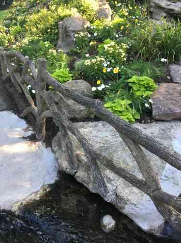 La rocaille fleurie de la cascade du jardin des plantes ne manque pas de charme.