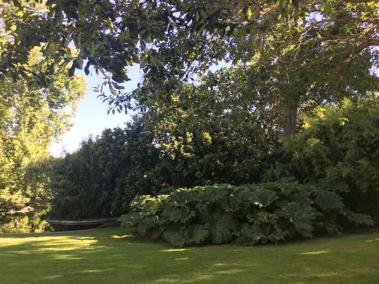 C'est le paysagiste Edouard André (1840-1911) qui a redessiné l'ancien jardin de l'école de botanique pour en faire le jardin romantique que l'on peut découvrir aujourd'hui.