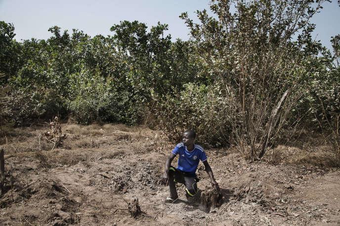 Richard Mendy, habitant de Punta Rosa, pose le 26 janvier 2018, dans le cratère d'un obus tiré par l'armée sénégalaise sur des positions de la rebellion casamançaise (MLDC) soupçonnée d'être impliqué dans l'assassinat de 14 collecteurs de bois dans la forêt de Bourofaye