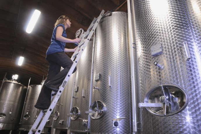Une viticultrice travaille dans sa cave, en Alsace.