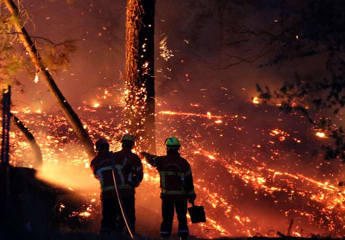 Des pompiers tentent d'éteindre l'incendie dans la forêt de Chiberta, le 30 juillet 2020.