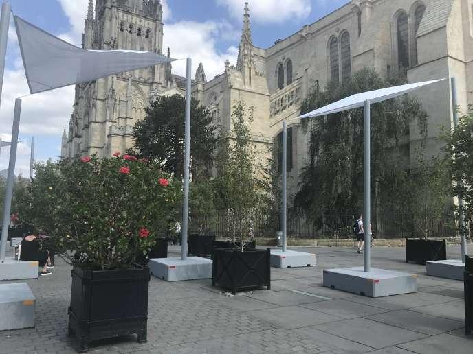 Le dispositif de végétalisation temporaire de la place Pey-Berland, à Bordeaux, en juillet 2019.