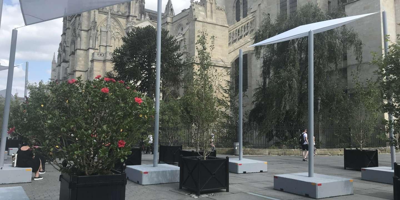 A Bordeaux, les écologistes au défi de verdir la « ville de pierre » pour lutter contre les canicules