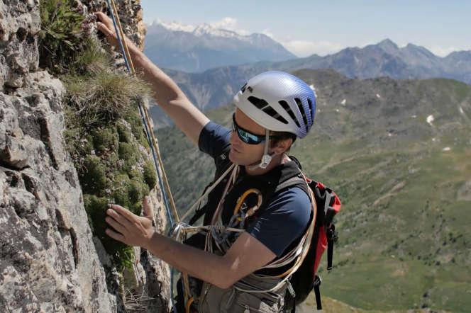 Sébastien Lavergne, biologiste au Laboratoire d'écologie alpine de Grenoble, devant une silène acaule, dans le nord-est du parc des Ecrins.