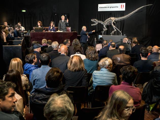 A Paris, le 11 avril 2018, la vente aux enchères à Drouot d'un spécimen d'allosaure (visible sur la photo), ainsi que d'un diplodocus. La paire a été adjugée pour 2,8 millions d'euros.
