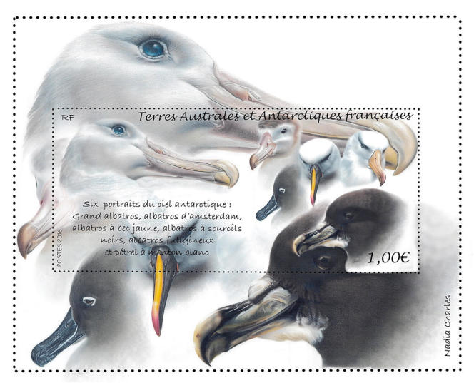 Projet de timbre sur les albatros (2016) pour les TAAF par Nadia Charles (maquette non retenue).