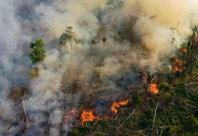 Un incendie illégal en Amazonie, dans l'Etat du Para, au Brésil, le 15 août 2020.