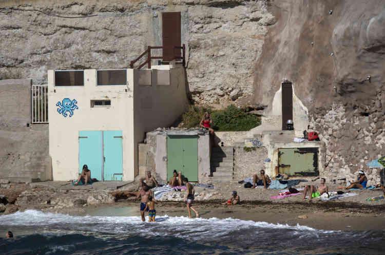 Poulpe dansl'anse des Sablettes, surnomméela plage Paulette, du nom de la paillotte qui s'y trouve(MARS_71, Marseille, 2020).