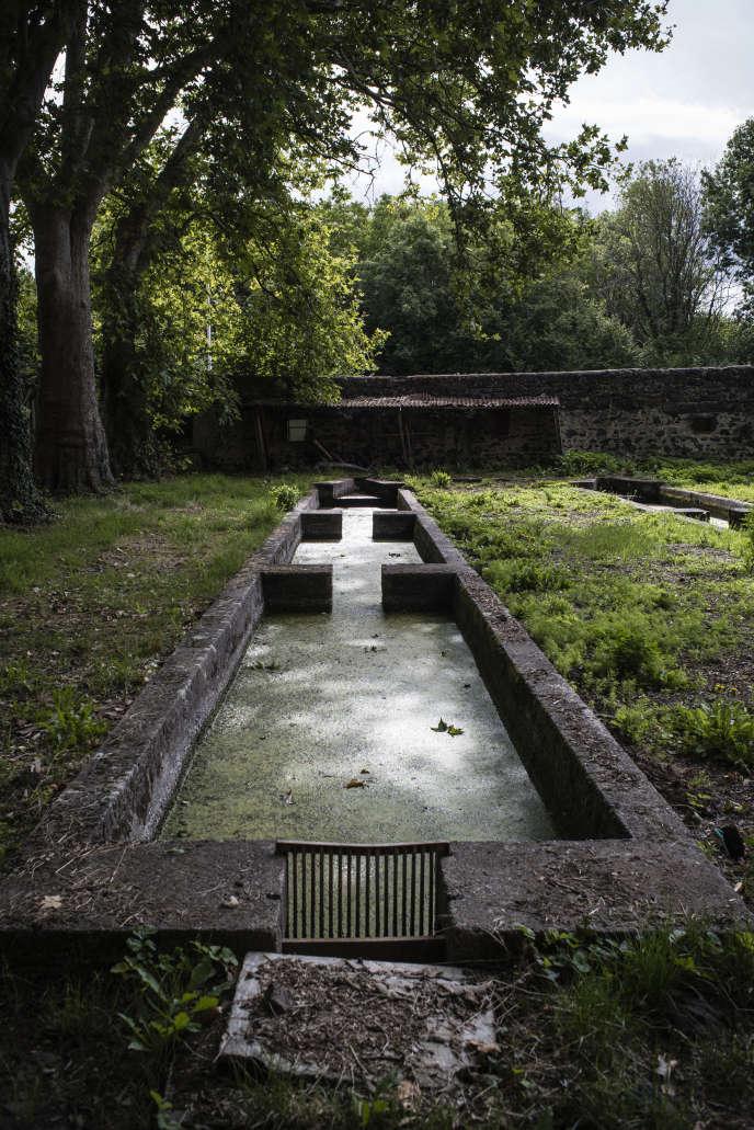 Au château de Saint-Genès-l'Enfant à Malauzat, Puy-de-Dôme, les trois sources alimentant les bassins sont presque taries, le 26 août.