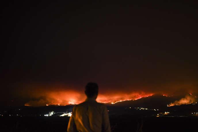 En 2017, la petite ville portugaise de Leiria, dans le centre du pays, avaient été la proie de graves incendies.