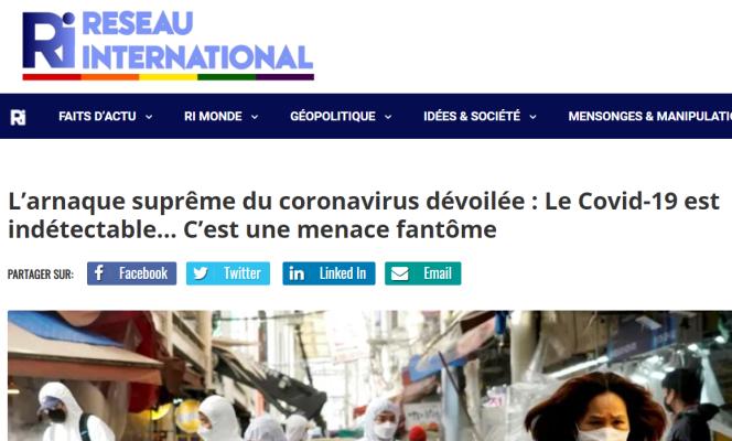 Capture d'écran de l'article du site Réseau international.
