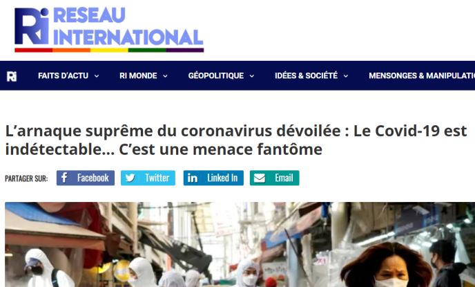 Capture d'écran de l'article du site Internet du Réseau International.