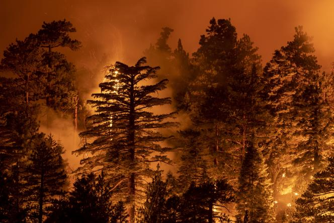 Feu de forêt à Monrovia, Californie, le 11 septembre.