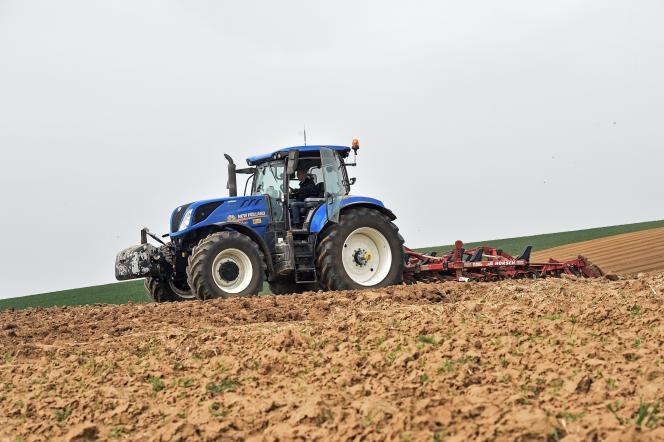 Un champ de pommes de terre, dans le département du Nord, en 2019.