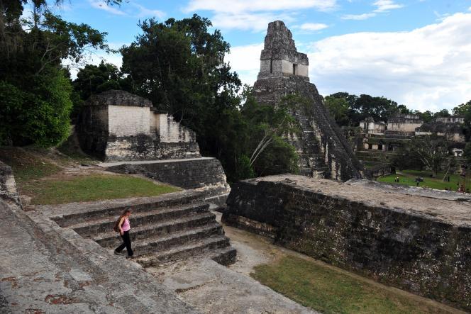 Le site archéologique de Tikal dans la région du Peten, à 560 km au nord de la ville de Guatemala, en décembre 2012.