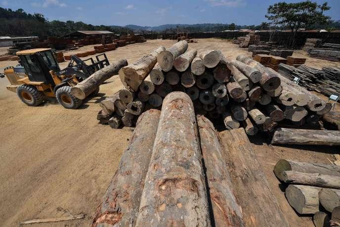 L'accord UE-Mercosur risque d'accélérer la déforestation, selon les experts