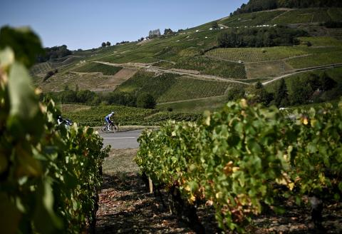 Escapee Team Deceuninck rider French Remi Cavagna rides ahead during the 19th stage of the 107th edition of the Tour de France cycling race, 160 km between Bourg-en-Bresse and Champagnole, on September 18, 2020. / AFP / Anne-Christine POUJOULAT