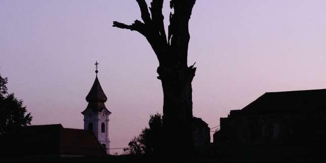«Demain la brume», de Timothée Demeillers: grandir et mourir pour Vukovar