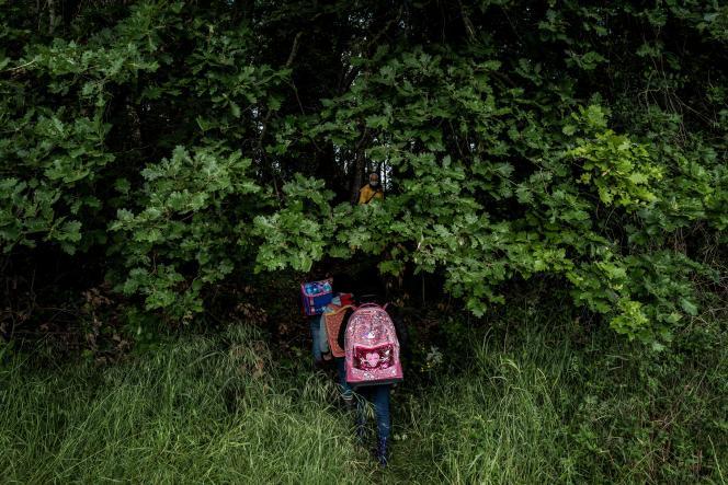 Des enfants se promènent dans une forêt près de Upie (Drôme), le 12 mai.