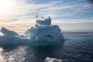 Sur la banquise arctique, le 14 septembre.