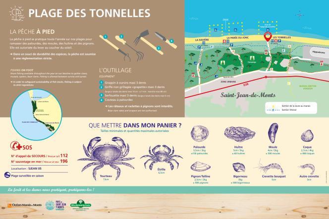Panneau entrée de plage en forêt domaniale du Pays de Monts. Conception graphique et illustrationsau au stylo à bille pour l'ONF-Pays de la Loire.
