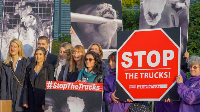 Image extraite du documentaire «Le scandale du transport de bétail vers l'Orient», de Manfred Karremann.