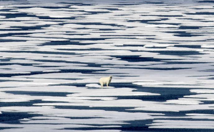 Un ours polaire se tient sur la glace dans le détroit de Franklin, dans l'archipel arctique canadien, le 22 juillet 2017.