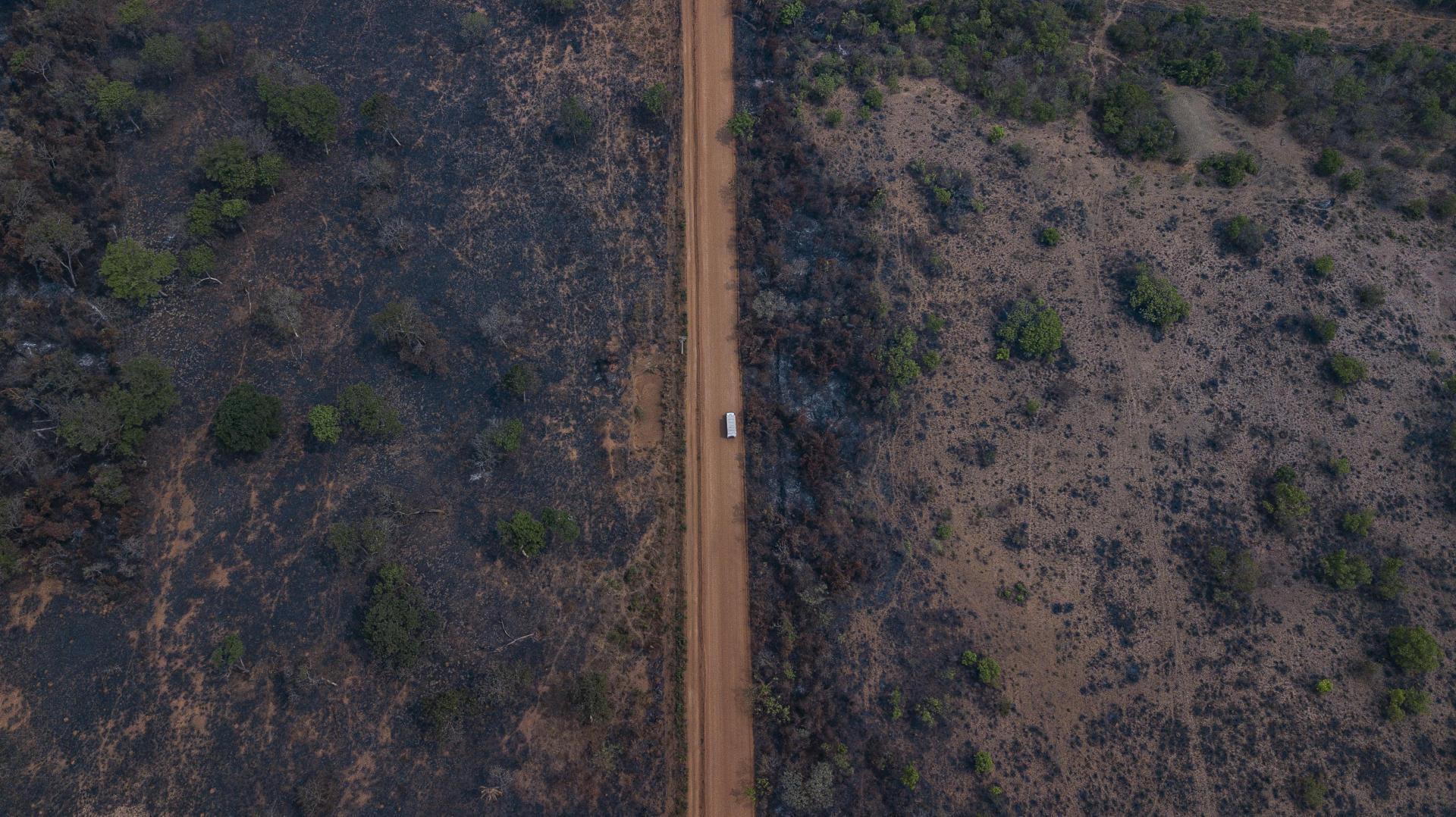 Le long de la Transpantaneira, la route qui traverse le Pantanal, dans l'Etat du Mato Grosso, au Brésil, le 22 septembre.