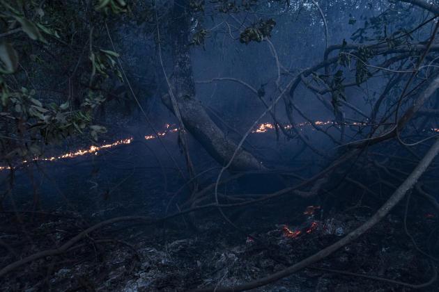 Um dos muitos incêndios que devastaram o Pantanal, uma vasta área de biodiversidade que abriga 650 espécies de pássaros.