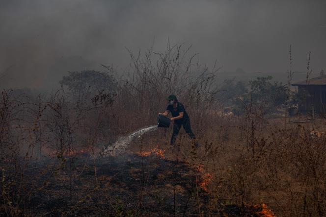 Dans l'Etat de Mato Grosso, au Brésil, une habitante de la ville de Claudia tente d'éteindre un feu, le 10 août 2020.