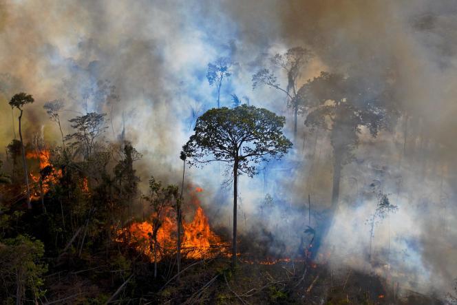 Incendie allumé illégalement dans la forêt amazonienne, au sud de Novo Progresso, au Brésil, le 15 août 2020.