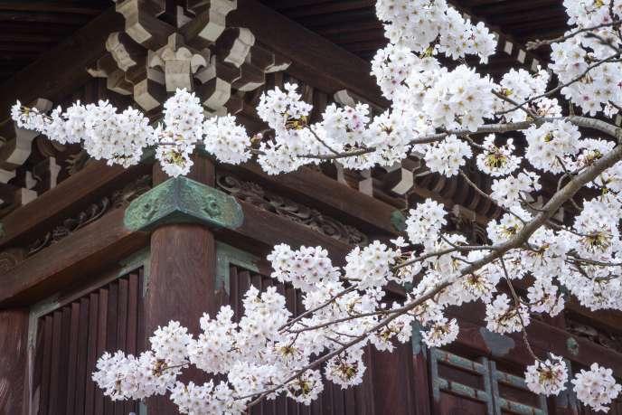 A Kyoto.