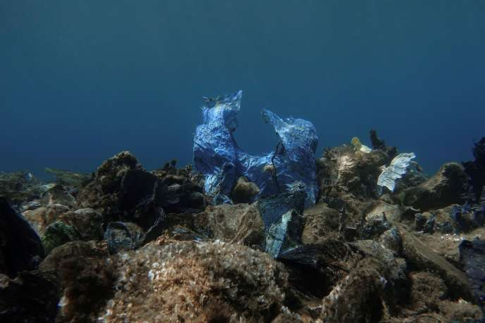 Un sac en plastique au fond de la mer, au large de l'île d'Andros (Grèce).