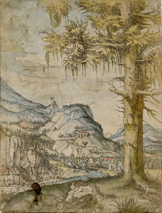 « Paysage au grand épicéa » (peu avant 1520), d'Albrecht Altdorfer, eau-forte aquarellée, 23,2 x 17,7 cm.