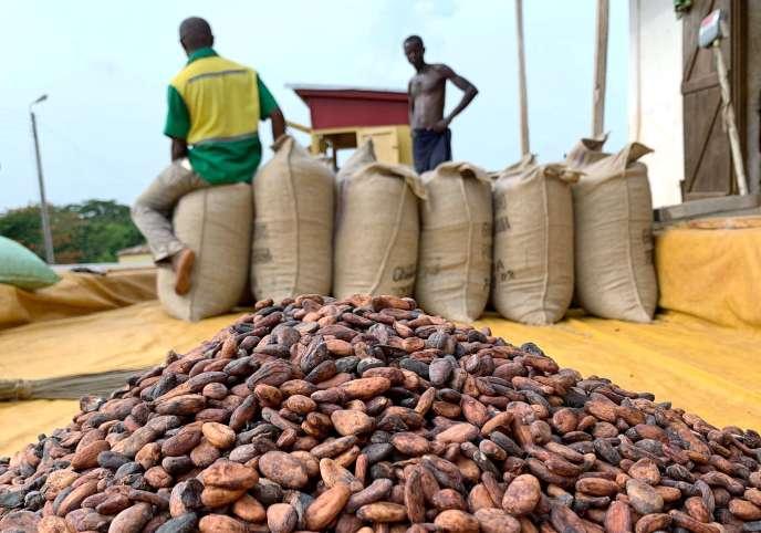 Des fèves de cacao dans un entrepôt près de Sunyani, au Ghana, en avril 2019.