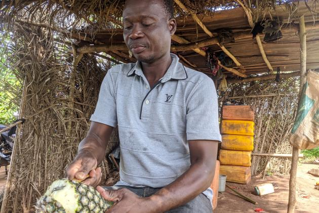 Pascal Eguiadje, chargé de la commercialisation au RéPAB, sur l'exploitation de François Bodotodé, qui a converti son exploitation au biologique et obtenu la certification Fairtrade en 2018.