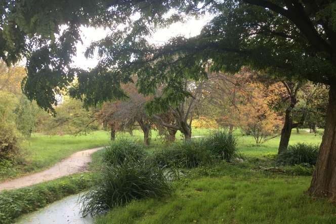 L'arboretum de l'école Du Breuil, à Paris, dans le bois de Vincennes.