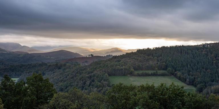 Paysage des Hautes-Pyrénées. Les forêts sont présentes sur tout le piémont. Elles sont pincipalement la propriété des communes et de l'Etat.