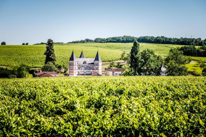 Les vignes de la maison Frapin s'étendent sur 240 hectares, entre le châteaude Fontpinot (à gauche) et Segonzac,en Charente.