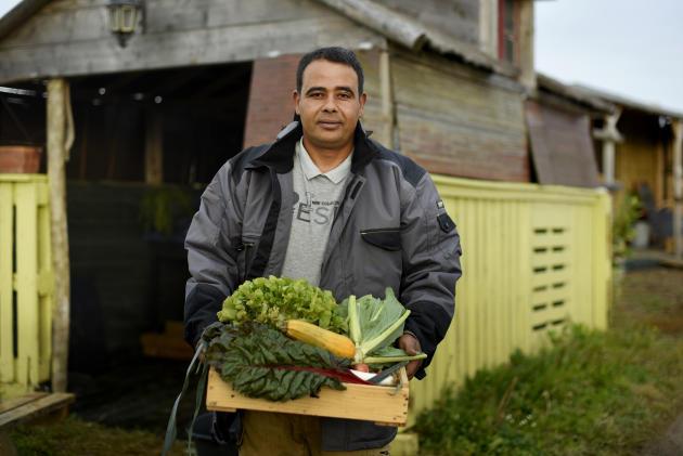 Jaouad Harrachi, maraîcher dans le« Potager d'Annie», prépare les paniers de légumes avant de les livrer, à Colombelles (Calvados), le 8 octobre.