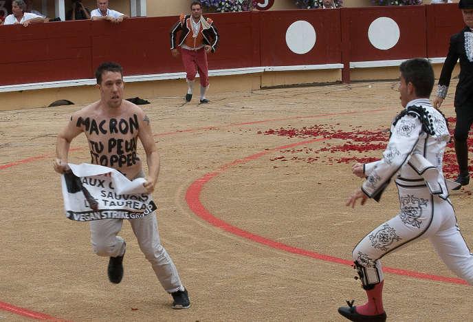 Un militant anti-corrida pénètre dans l'arène lors d'une course de taureaux, àBayonne, en août 2017.