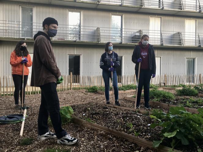 Bouffée d'air en période de confinement, un atelier jardinage pour les étudiants de la résidence du Technopole à Plouzané, en périphérie de Brest.