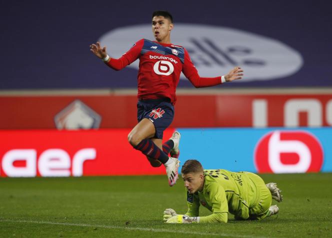 Le Lillois Luis Araujo face au Lorientais Paul Nardi, à Lille le 22 novembre 2020.
