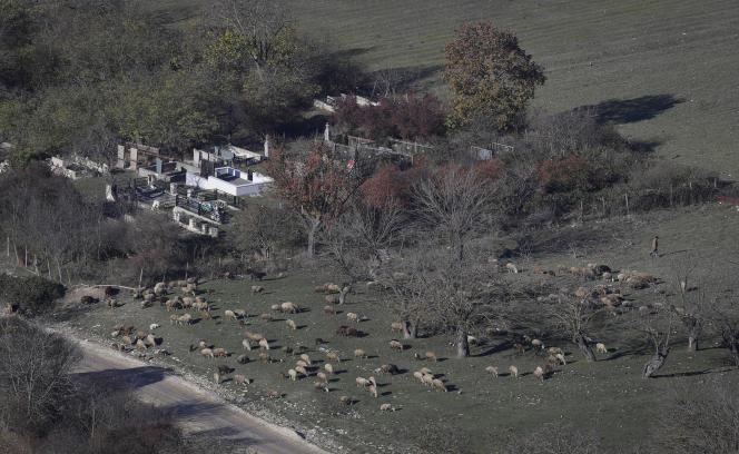 Un agriculteur arménien rassemble un troupeau de moutons près d'un cimetière duvillage d'Avdur, dans le Haut-Karabakh, mardi 24 novembre.