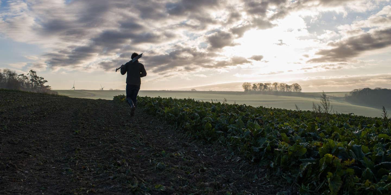 Cancer : une étude de grande ampleur confirme les risques encourus par les agriculteurs français