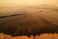 Des cendres provenant de feux de brousse, échouées sur une plage de Merimbula (Australie), en janvier.