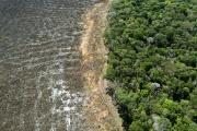 Vue aérienne des effets de la déforestation sur la forêt amazonienne, près de Sinop, dans l'Etat du Mato Grosso, au Brésil, le 7 août 2020.